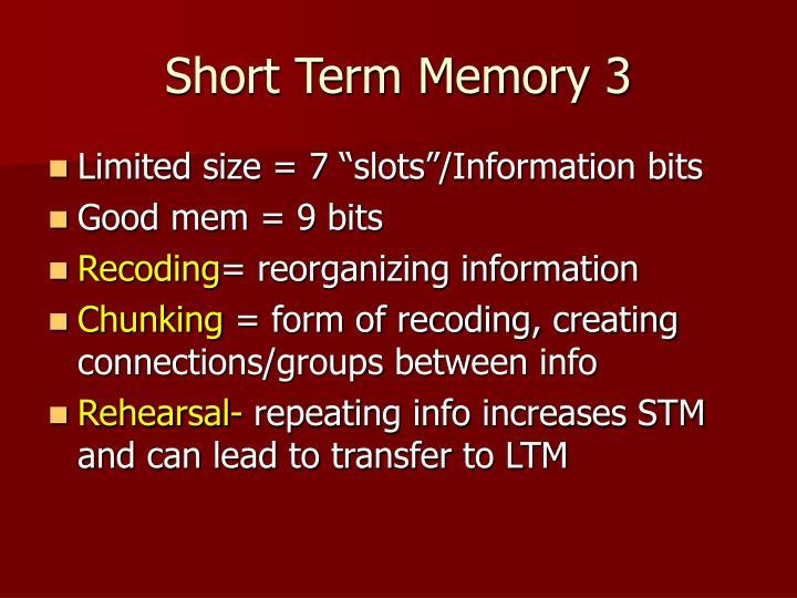Short Term Memory 3