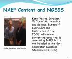 naep content and ngsss