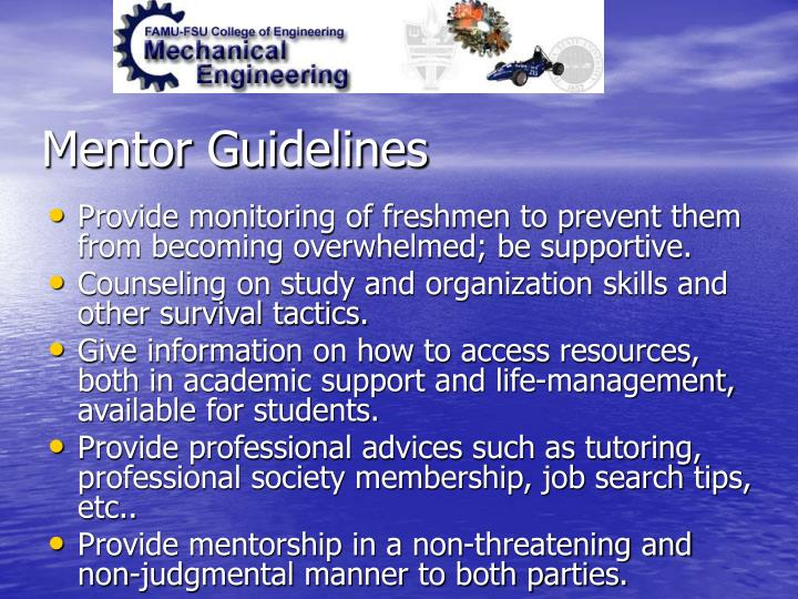Mentor Guidelines