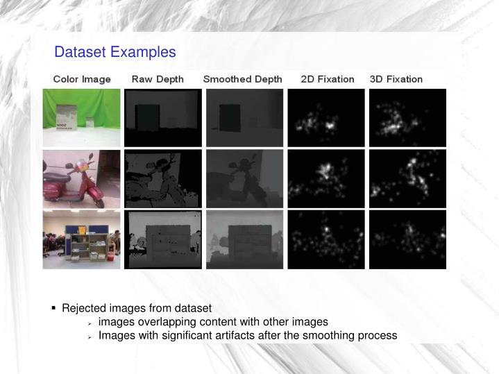 Dataset Examples