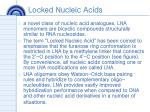 locked nucleic acids