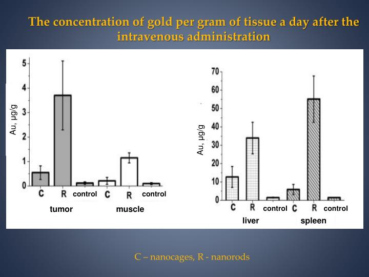The concentration of gold per gram of tissue a day after the intravenous administration