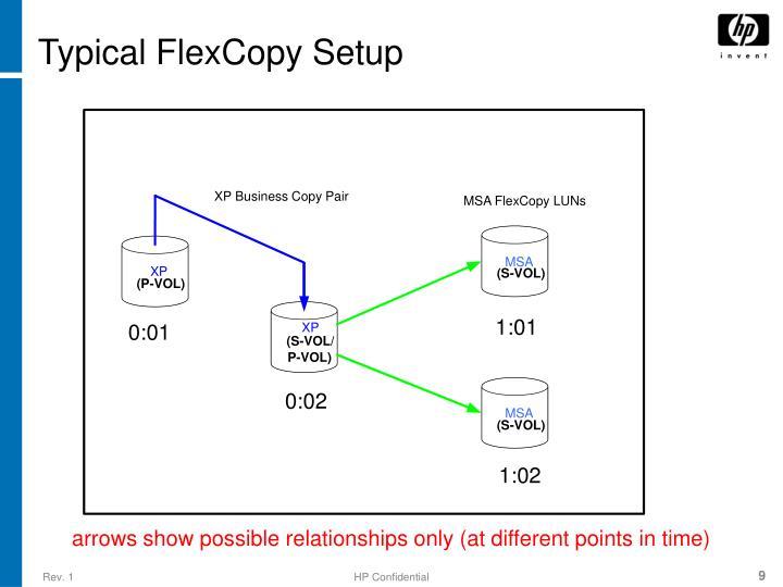 Typical FlexCopy Setup