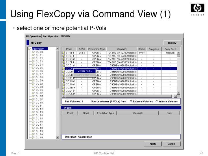 Using FlexCopy via Command View (1)