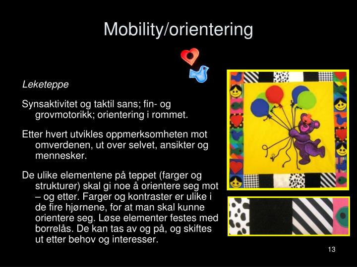 Mobility/orientering