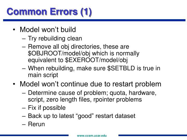Common Errors (1)
