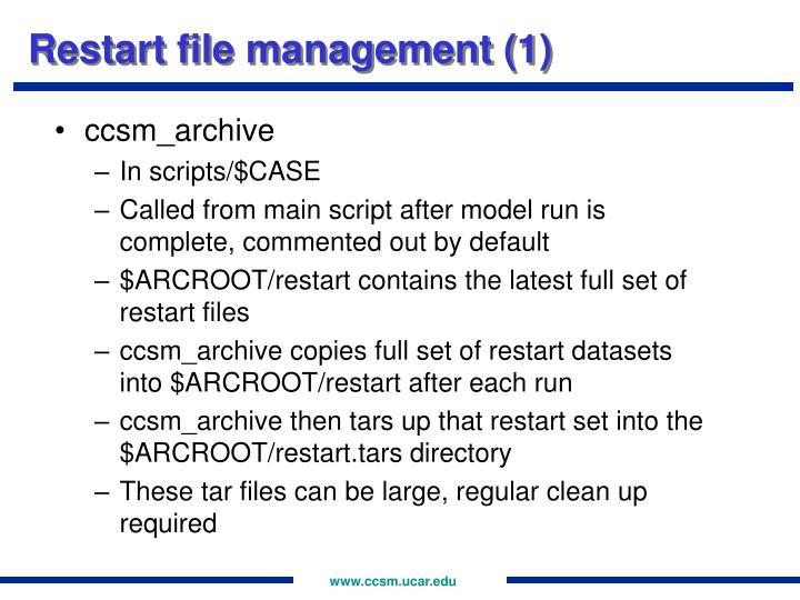 Restart file management (1)