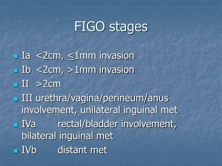 FIGO stages