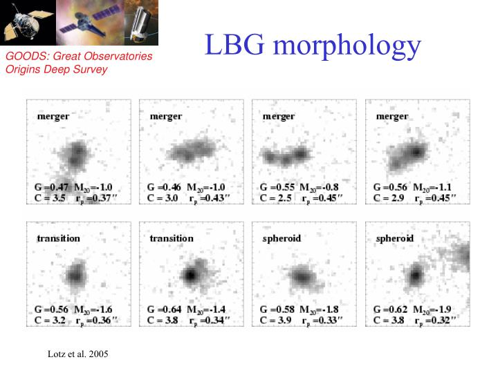 LBG morphology
