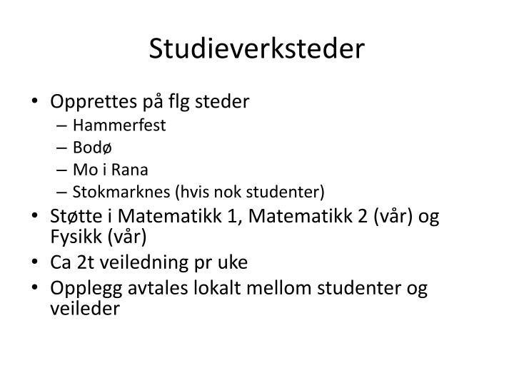 Studieverksteder