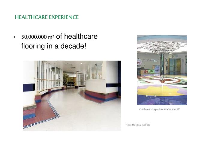 HEALTHCARE EXPERIENCE