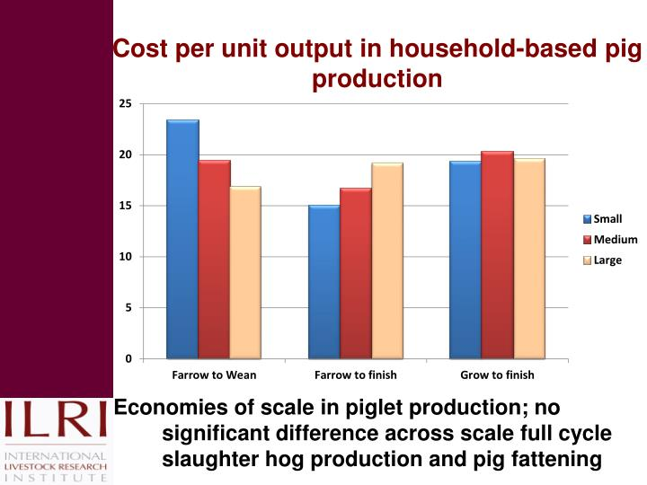 Cost per unit output in household-based pig production