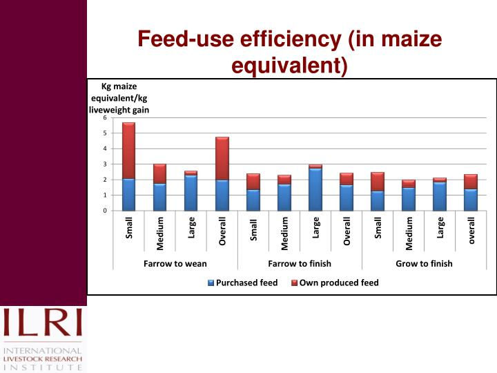 Feed-use efficiency (in maize equivalent)