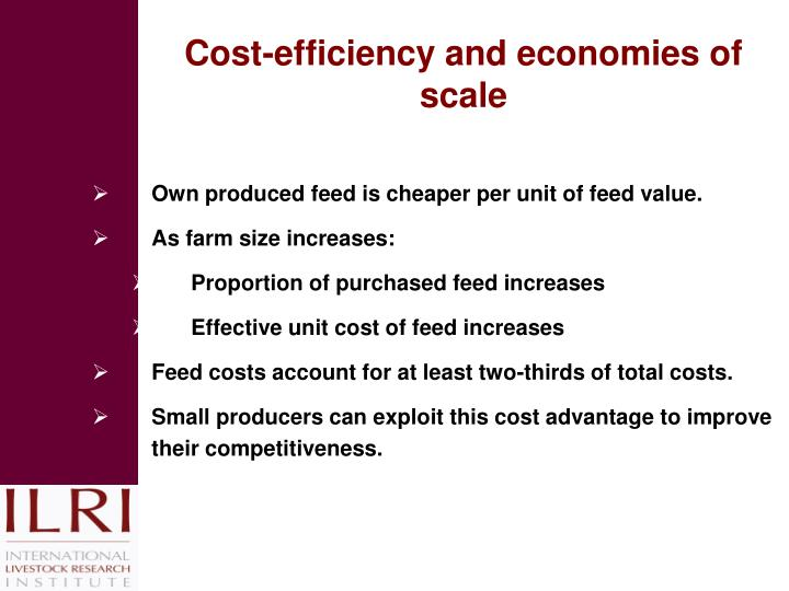 Cost-efficiency and economies of scale