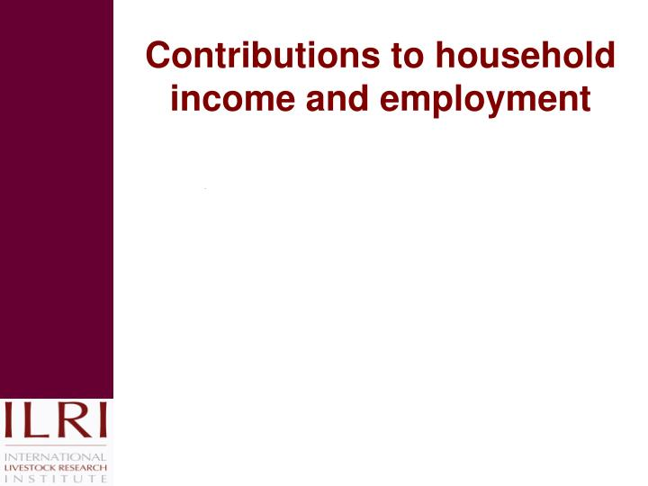 Contributions to household income and employment