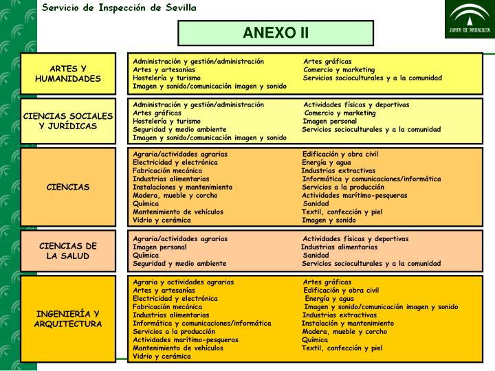 ANEXO II