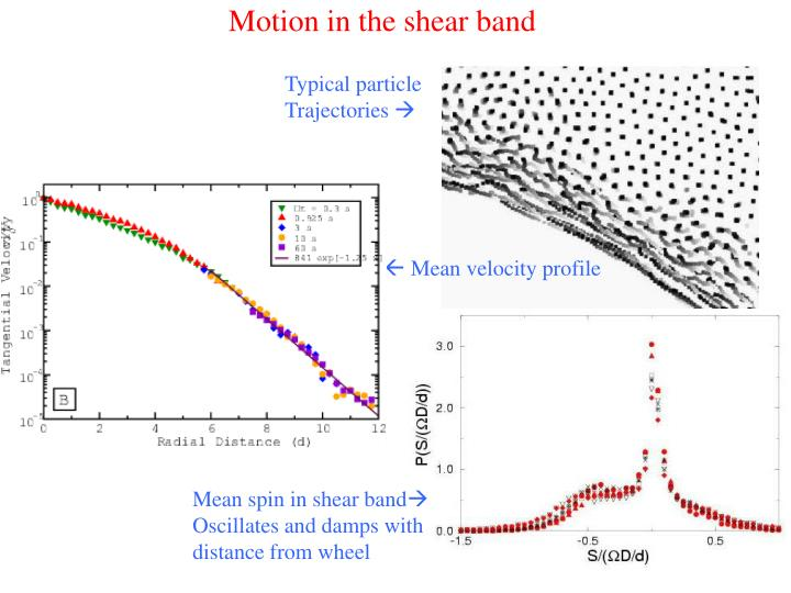 Motion in the shear band