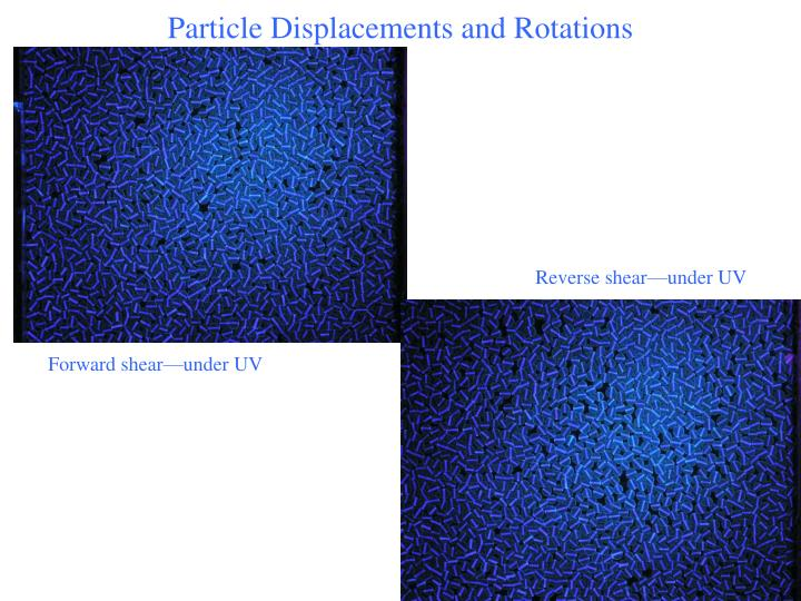 Particle Displacements and Rotations