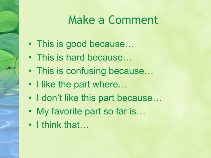 Make a Comment