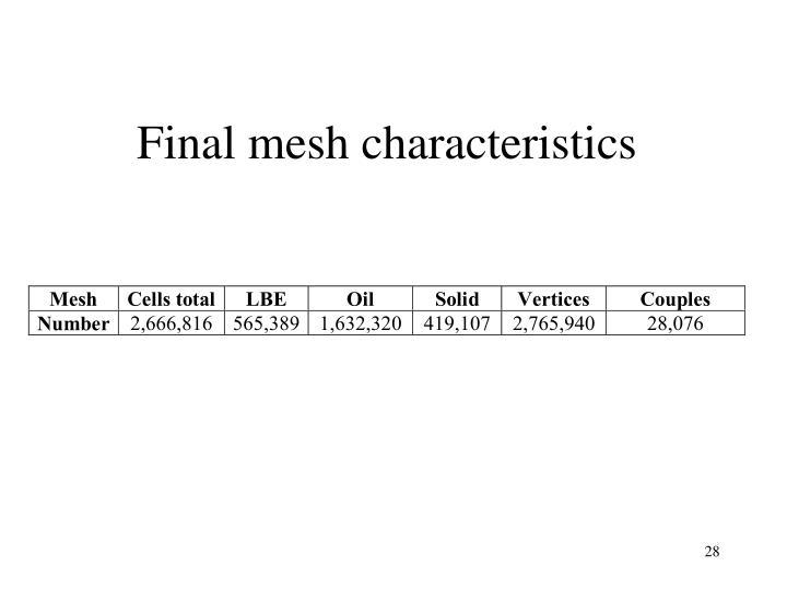 Final mesh characteristics
