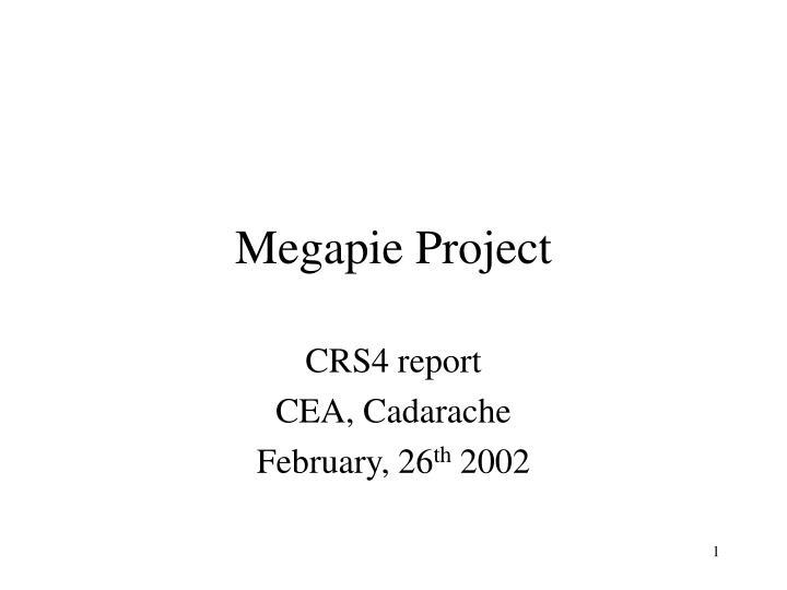 Megapie project