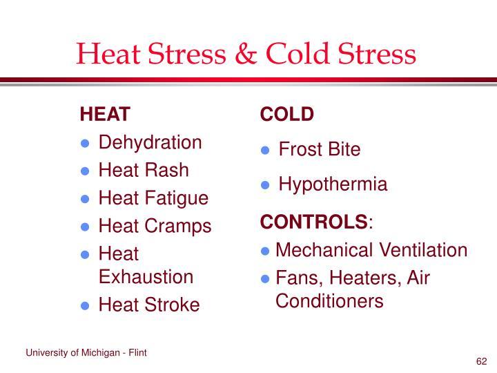 Heat Stress & Cold Stress