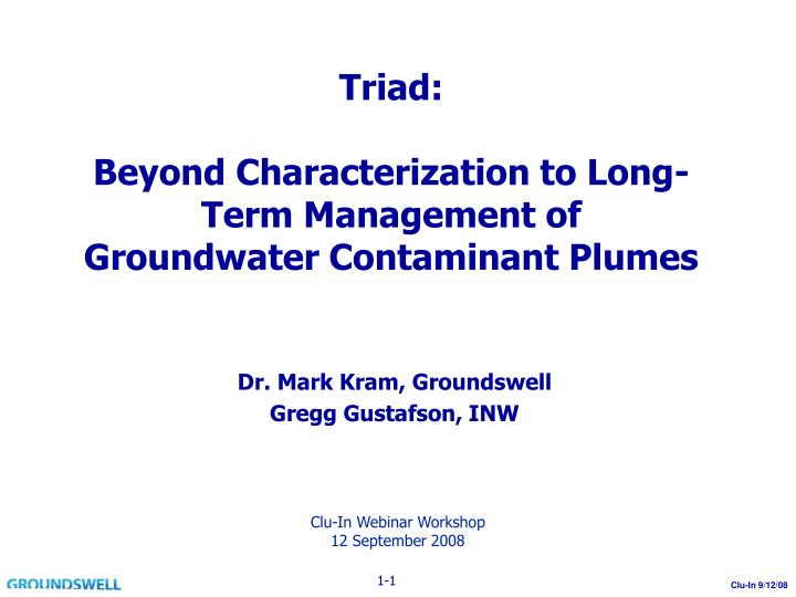 triad beyond characterization to long term management of groundwater contaminant plumes n.