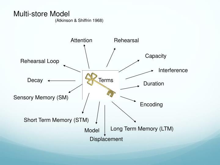 Multi-store Model