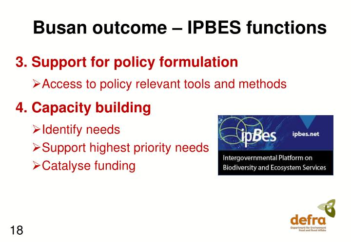 Busan outcome – IPBES functions