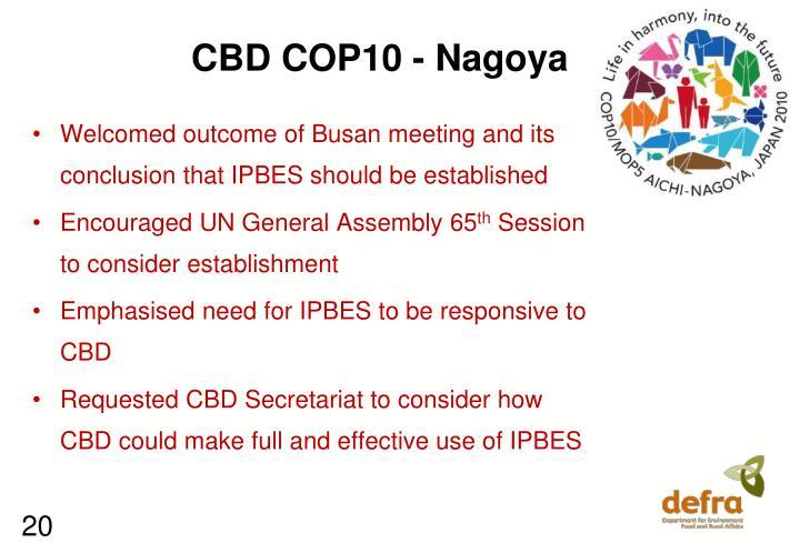 CBD COP10 - Nagoya