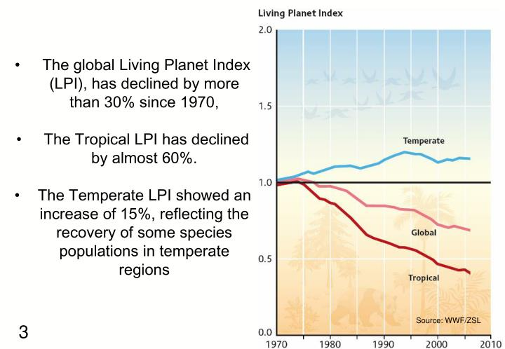 The global Living Planet Index (LPI), has declined by more than 30% since 1970,