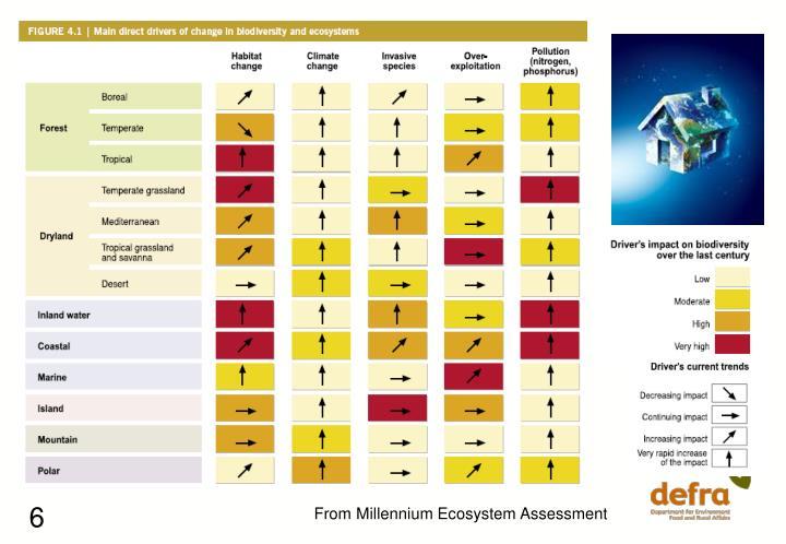 From Millennium Ecosystem Assessment