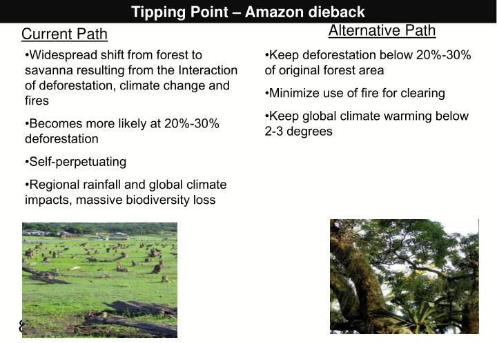 Tipping Point – Amazon dieback