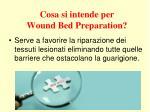 cosa si intende per wound bed preparation