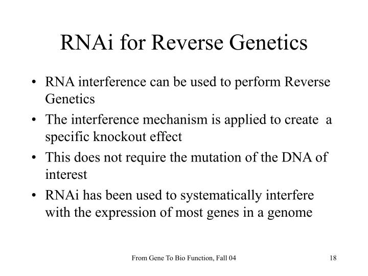 RNAi for Reverse Genetics