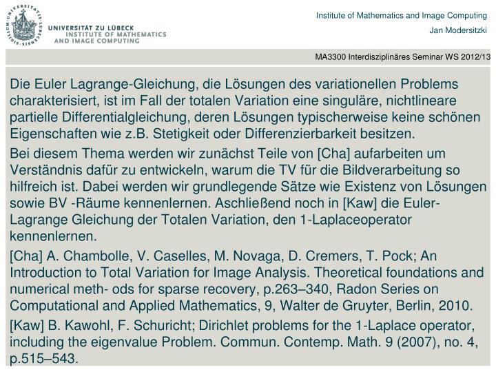 Die Euler Lagrange-Gleichung, die Lösungen des variationellen Problems charakterisiert, ist im Fall der totalen Variation eine singuläre, nichtlineare partielle Differentialgleichung, deren Lösungen typischerweise keine schönen Eigenschaften wie z.B. Stetigkeit oder Differenzierbarkeit besitzen.