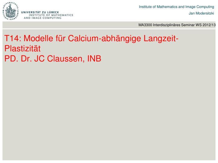 T14: Modelle für Calcium-abhängige Langzeit-Plastizität