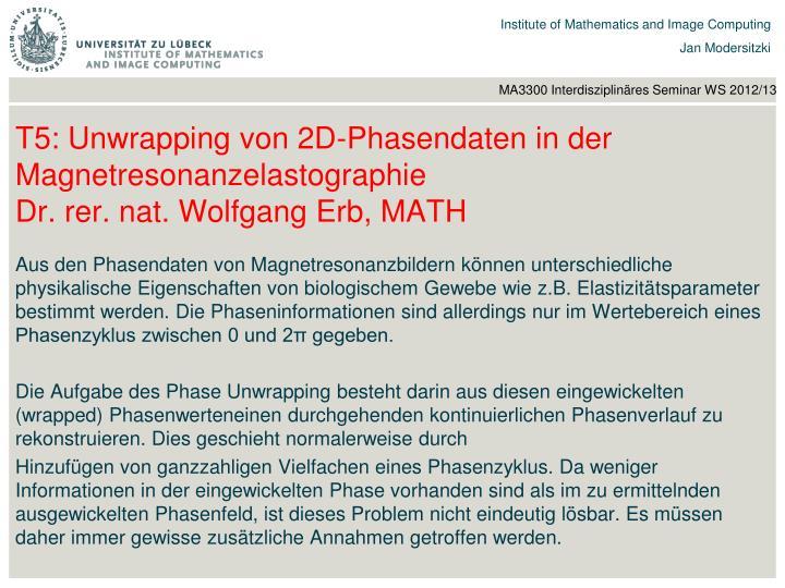 T5: Unwrapping von 2D-Phasendaten in der