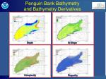 penguin bank bathymetry and bathymetry derivatives
