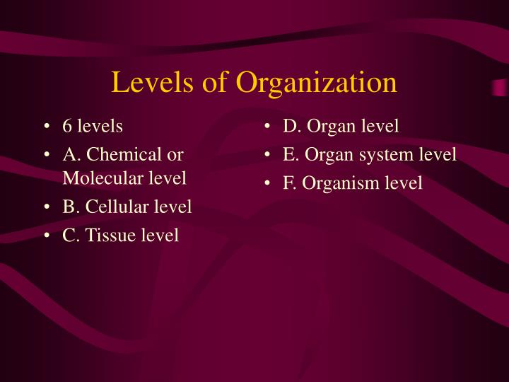 6 levels