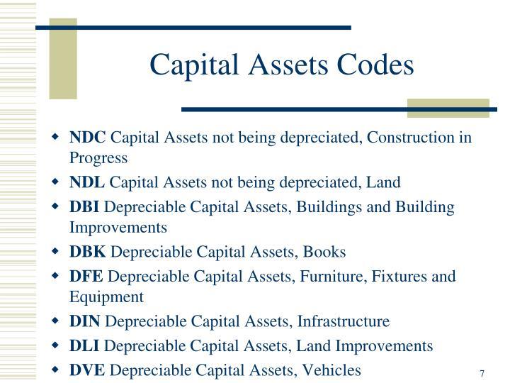 Capital Assets Codes