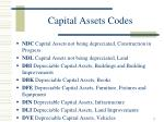 capital assets codes