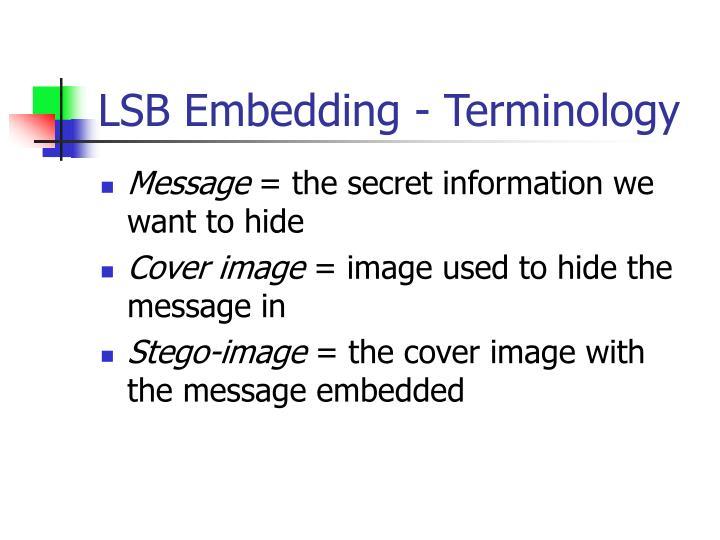 LSB Embedding - Terminology