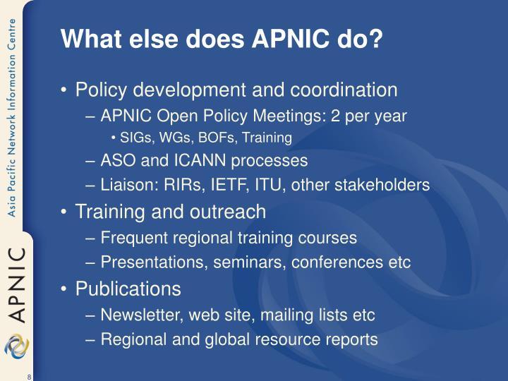 What else does APNIC do?