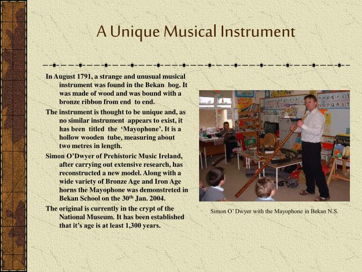 A Unique Musical Instrument