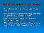 beliefs about learning strategies