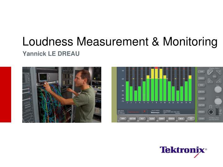 Loudness measurement monitoring