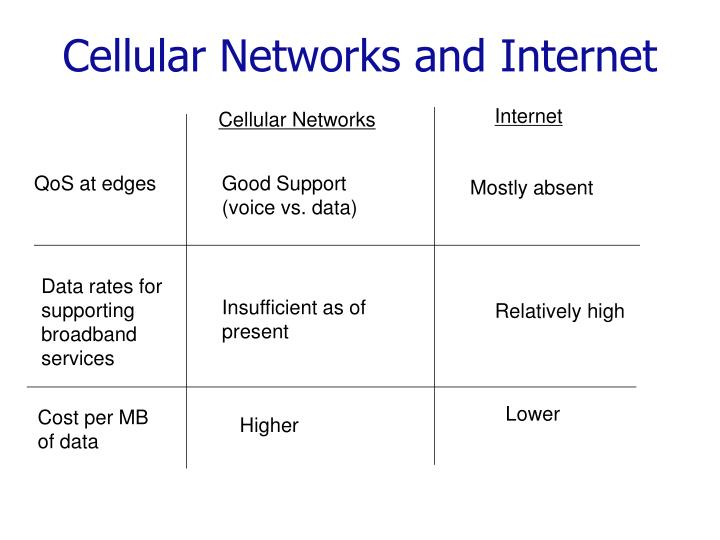 Cellular Networks and Internet