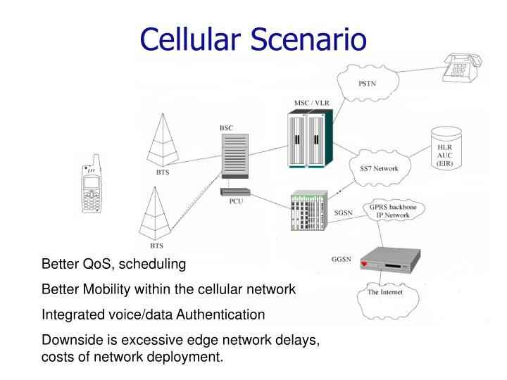 Cellular Scenario