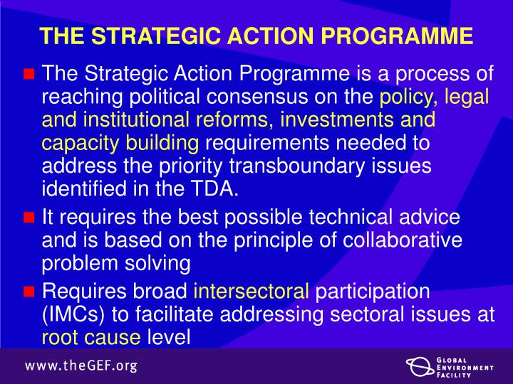 THE STRATEGIC ACTION PROGRAMME